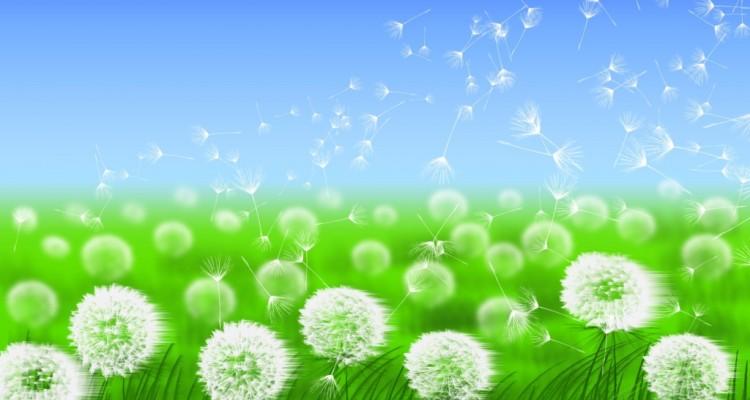 Altijd verse lucht in je huis met balansventilatie
