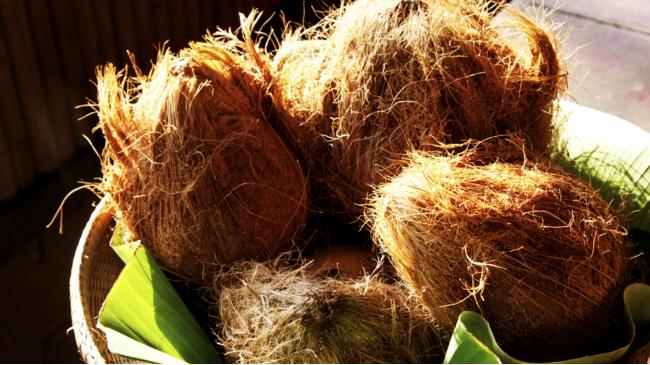 isoleren met kokos